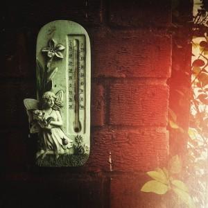 temperature-450774_640